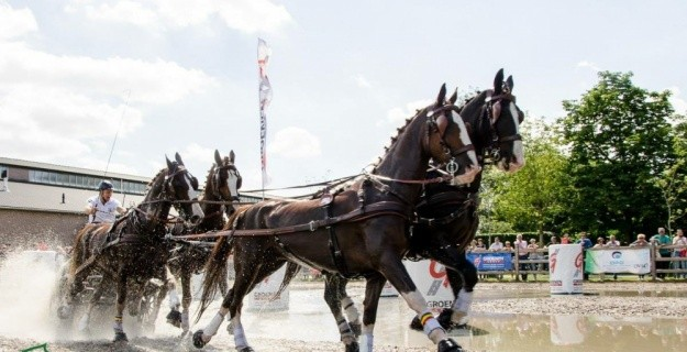 Driving Valkenswaard International